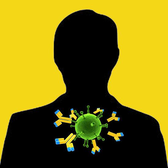 Rabbit anti human antithrombin III IgG fraction, biotin labeled