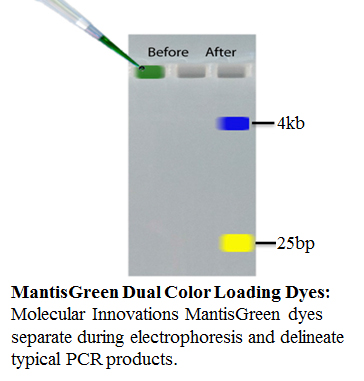 MantisGreen Dual Color Loading Dyes