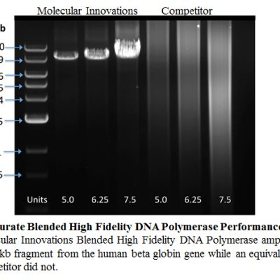 TaqCurate Blended High Fidelity DNA Polymerase Performance