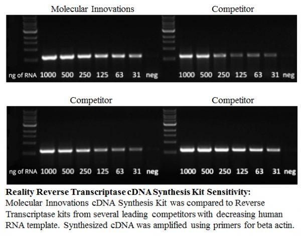 Reality Reverse Transcriptase cDNA Synthesis Kit Sensitivity