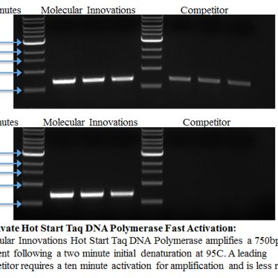 TaqTivate Hot Start Taq DNA Polymerase Fast Activation