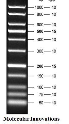 Molecular Innovations Low Range DNA Ladder