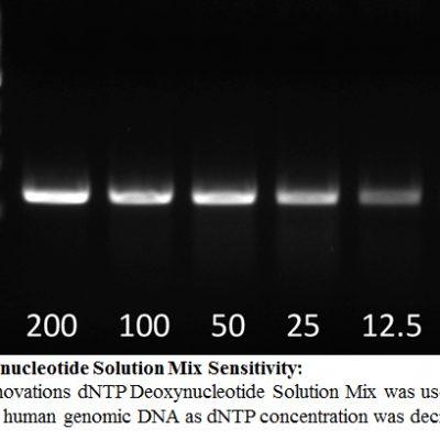 dNTP Deoxynucleotide Solution Mix Sensitivity