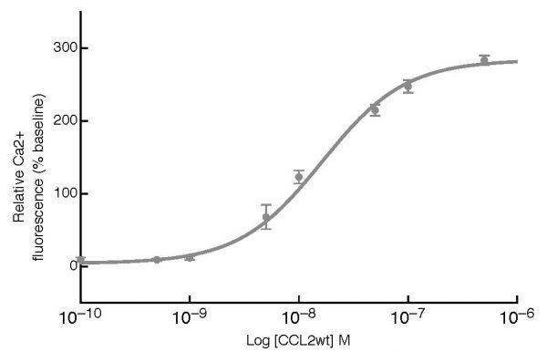 Human CCL2 Activity