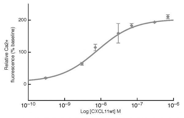Human CXCL11 Activity